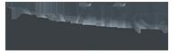 Revillise Логотип